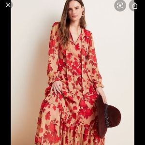 Anthropologie Rosalita Maxi dress